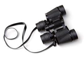 binoculars-1.jpg